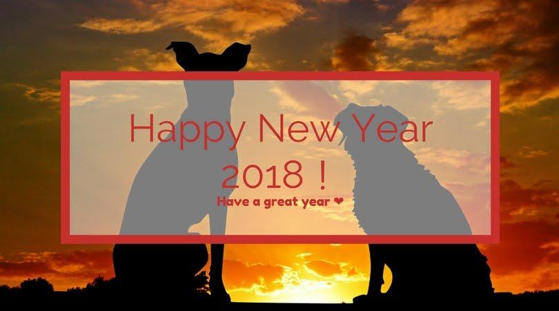 今年もお世話になりました:2017年&明けましておめでとうございます:2018年
