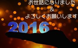 2016年はお世話になりました&2017年:明けましておめでとうございます