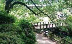 新宿御苑はのんびり散歩にピッタリの場所