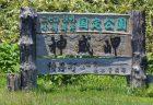 石神井公園は野鳥も楽しめるようですが、自然も楽しめます