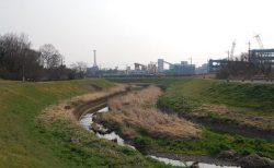 【ウォーキング】埼玉県・東松山駅周辺(吉見百穴〜大沼〜吉見観音等)を歩いてきました