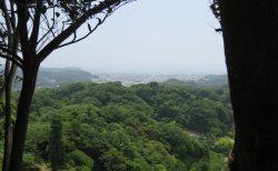 【登山】鎌倉アルプス(天園ハイキングコース)を歩いてきました