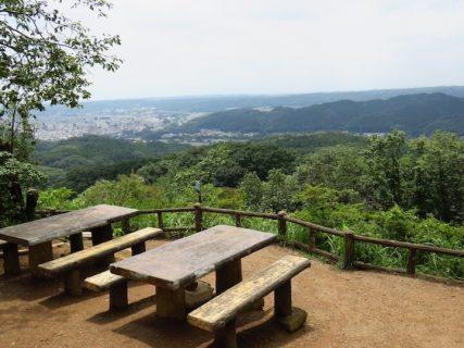 【登山】ピクニック気分で歩ける! 天覧山~多峯主山登山