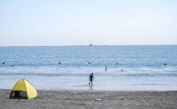 【写真】茅ヶ崎の秋の海とコスモス