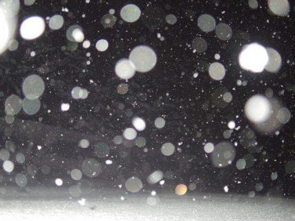【大雪・スーパーブルーブラッドムーン】撮った写真まとめ